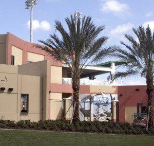 USF Baseball